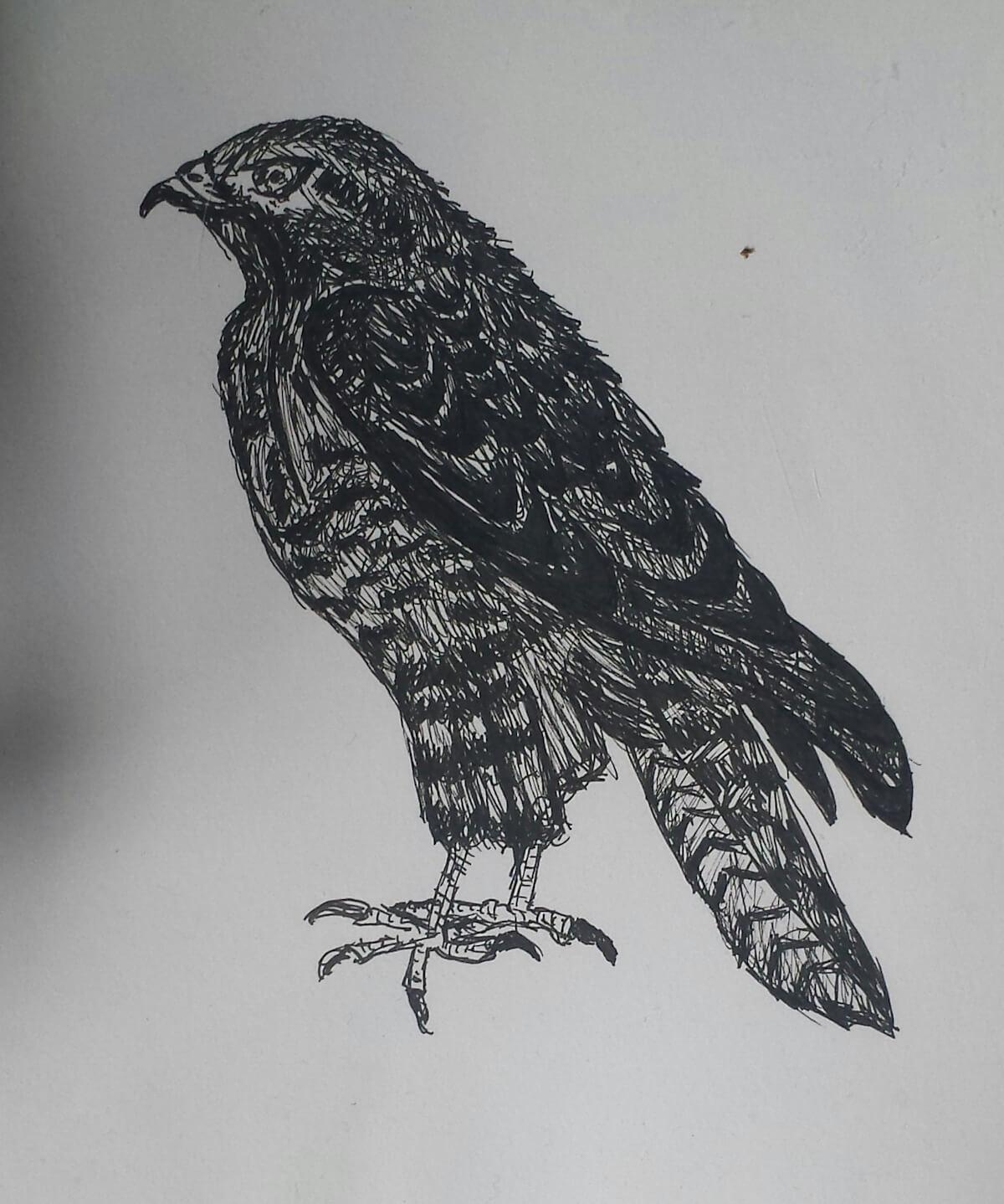 Zeichnung: Mara Lena Schönborn